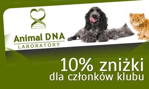 Przejdź do strony Animal DNA Laboratory